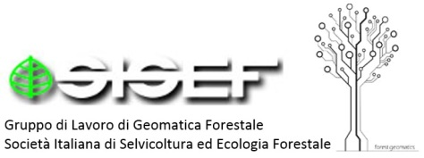 sisef_gruppo di lavoro di geomatica.jpg